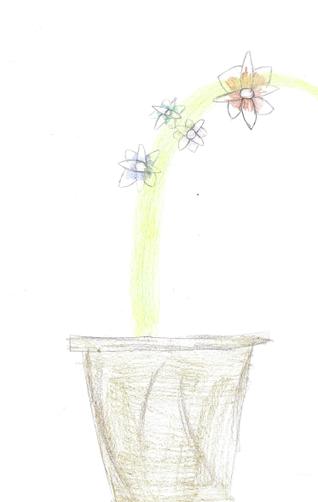 IC's beautiful flower sketch