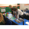 Learning about Viking trade routes