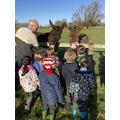 Donkey visit