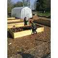 Our wonderful allotment space