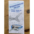 Sid's research on Hammerheads