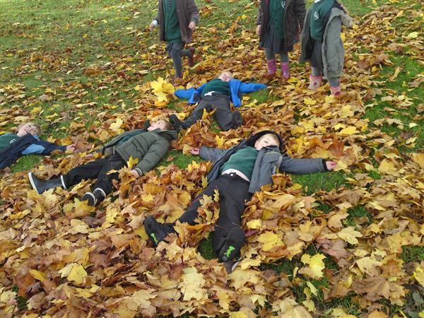 Autumn Leaves Fun!