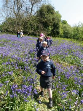KS1 Visit to nearby woods 2011