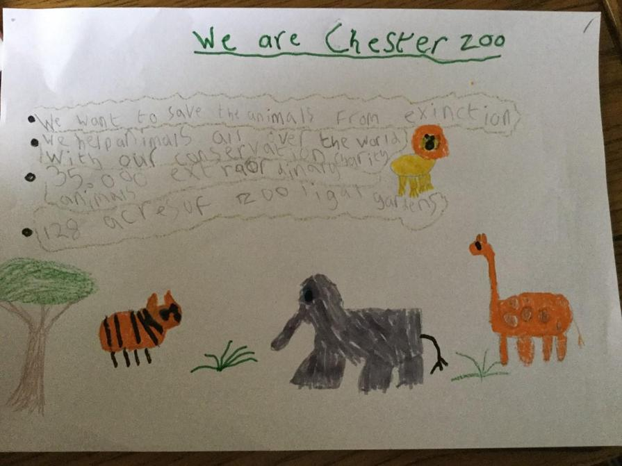 Jack's poster about Chester Zoo