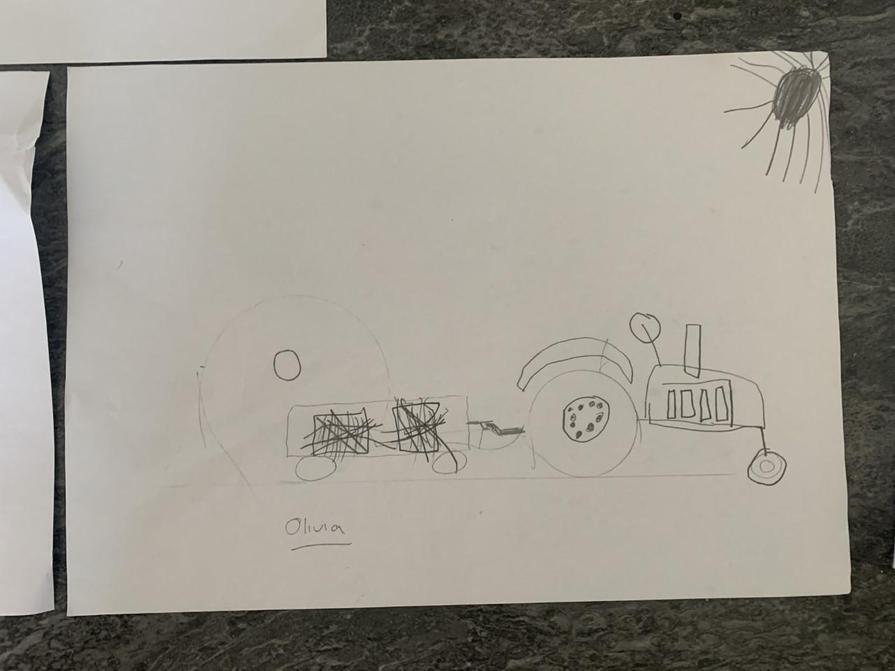 Olivia's tractor design