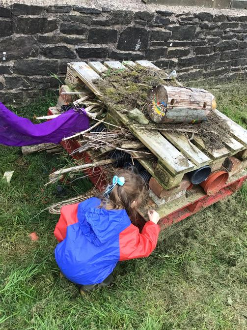 Using the bug hotel.