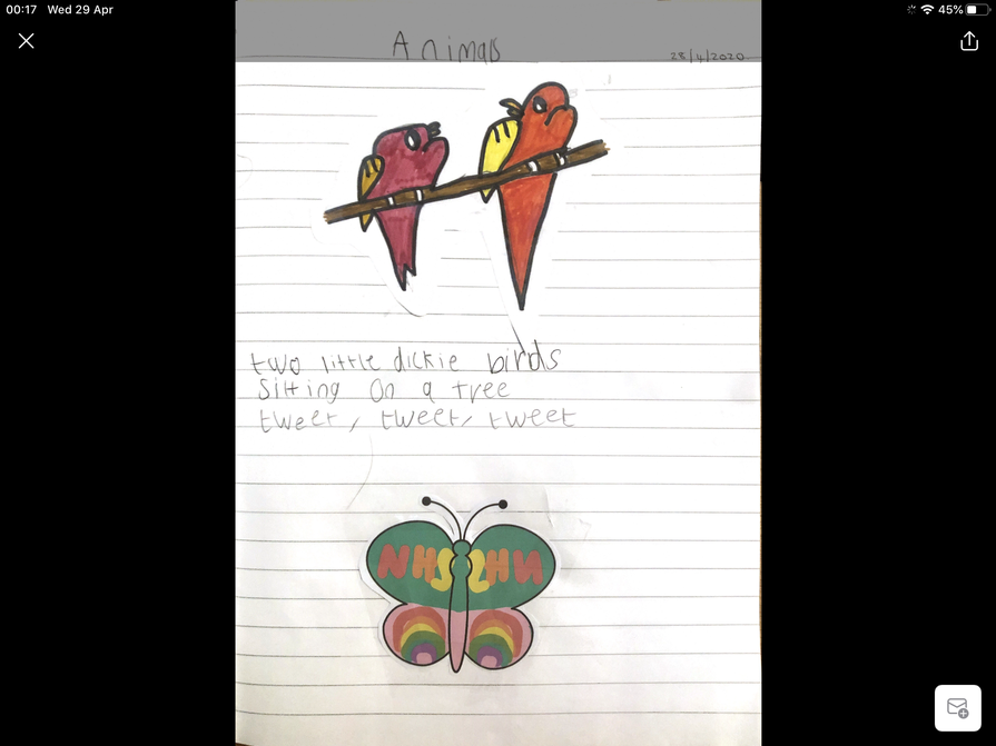 Lottie's super pet writing.