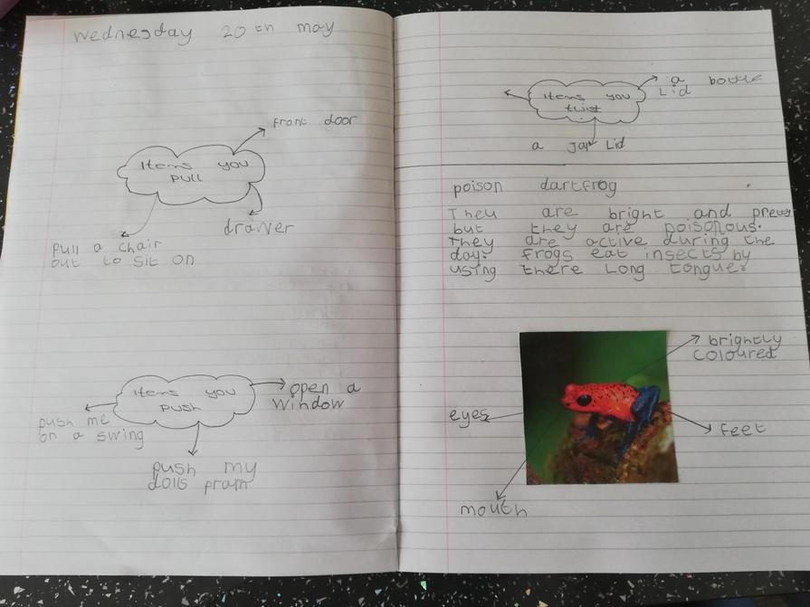 Super writing today Elsie!