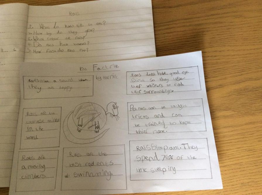 Harriet has worked really hard on her literacy!