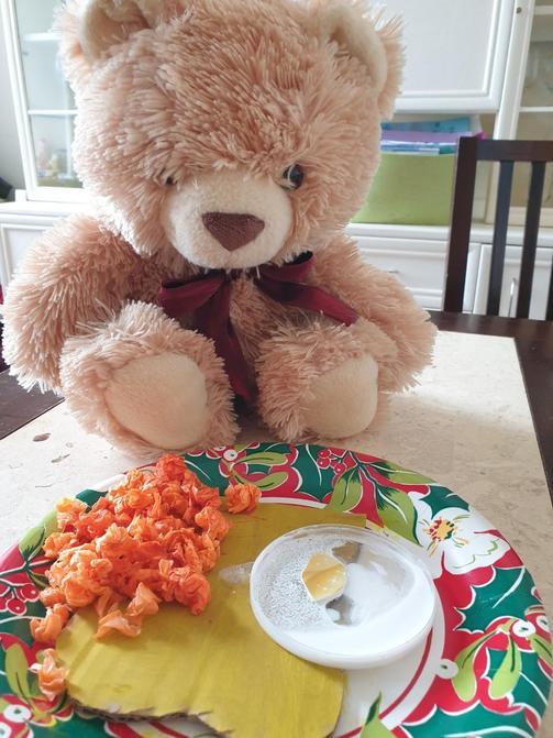 Aimee's bear!