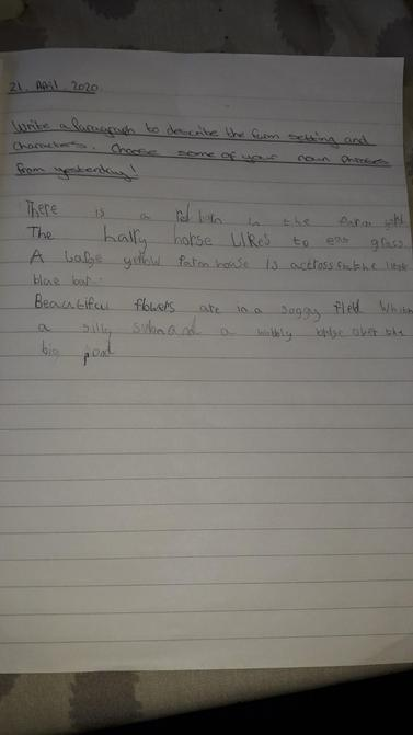 Literacy work by William.