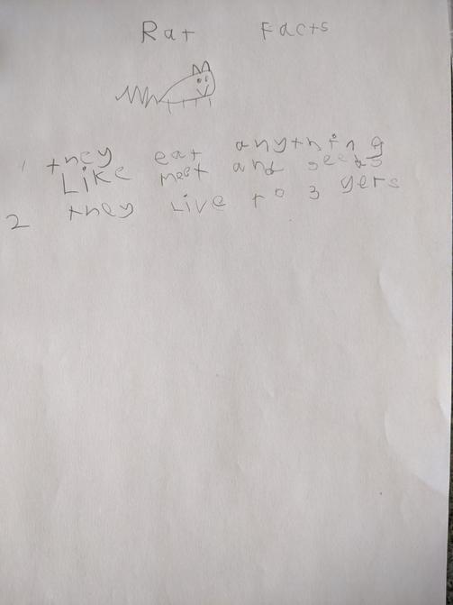 Leia's writing