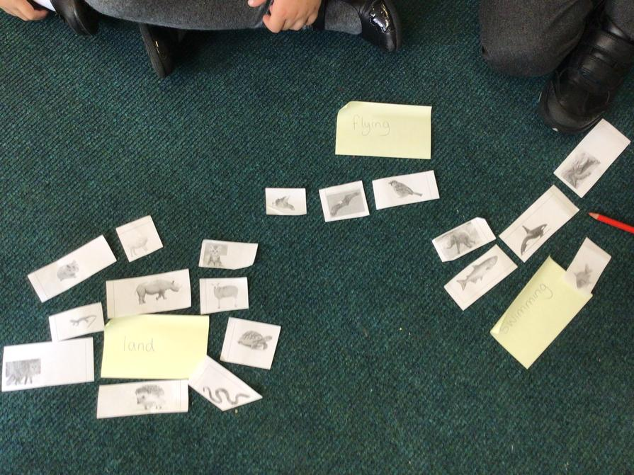 The children came up with their own group titles.