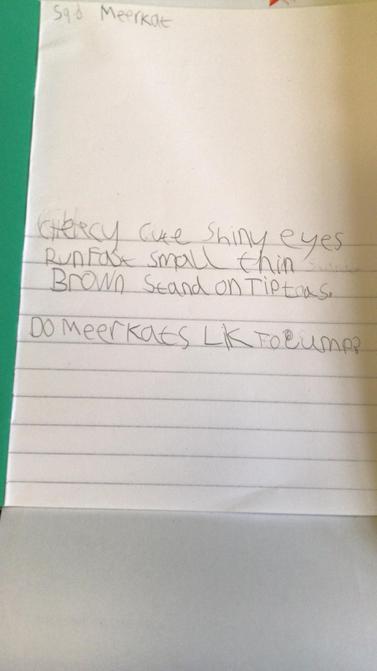 Super meerkat writing.
