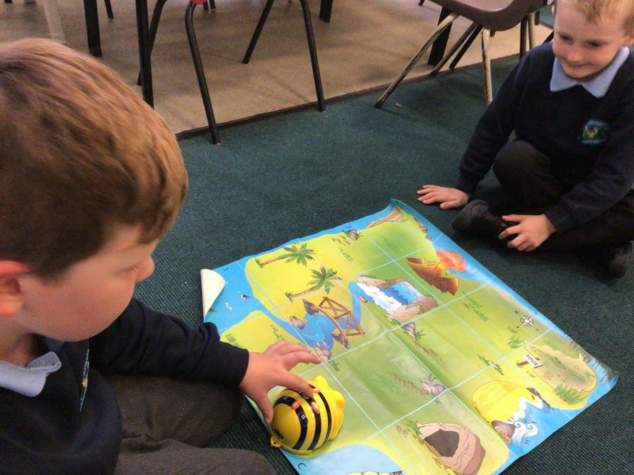 Bee bot learning.