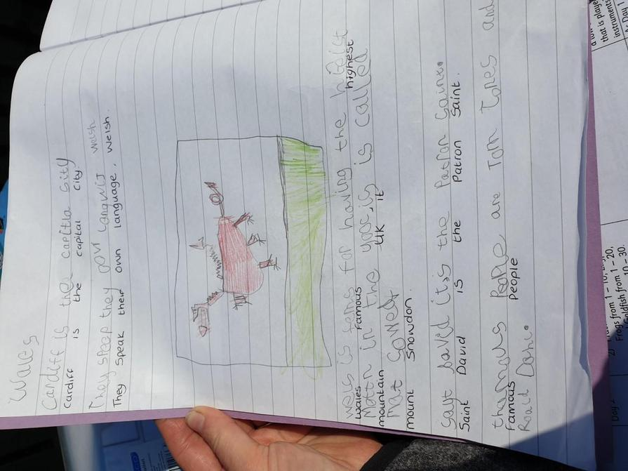 What a lovely Welsh dragon!