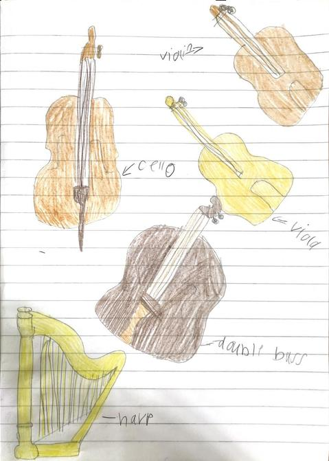 Lottie's pictures from her instrument research!
