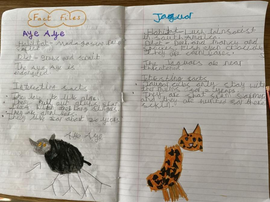 Olivia's animal fact file