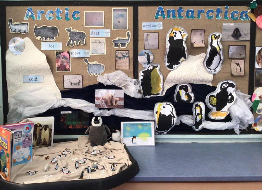 We compared animals in the Arctic to Antarctic