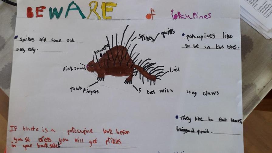 William's literacy work