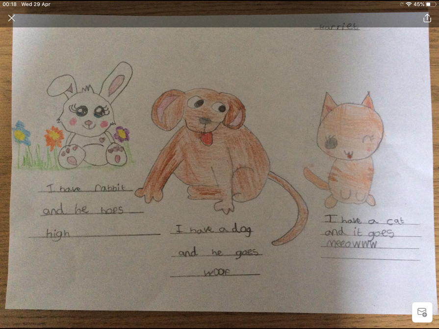 Harriet's amazing art work and writing.