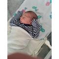 Baby Arlo