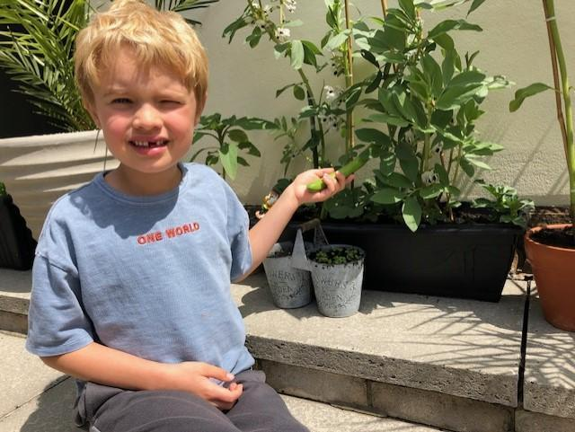 Look at Jack's bean plant!