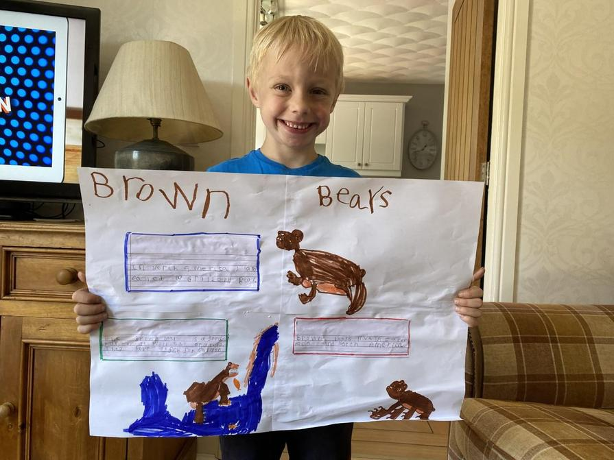 Luke's poster about bears