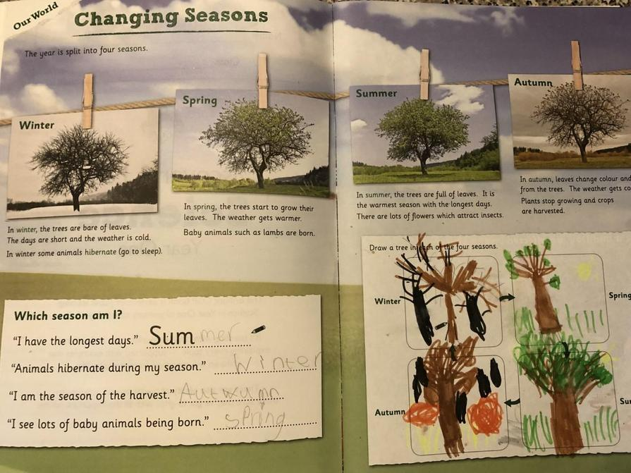 Alice's work on seasons