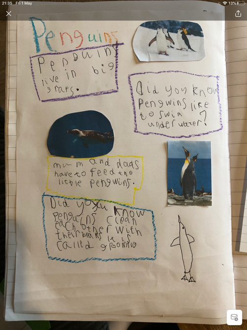 Penguin writing.