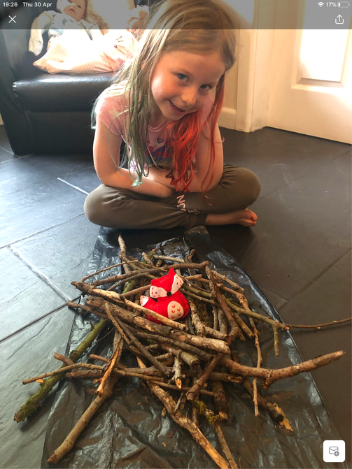 Lottie's bird nest.