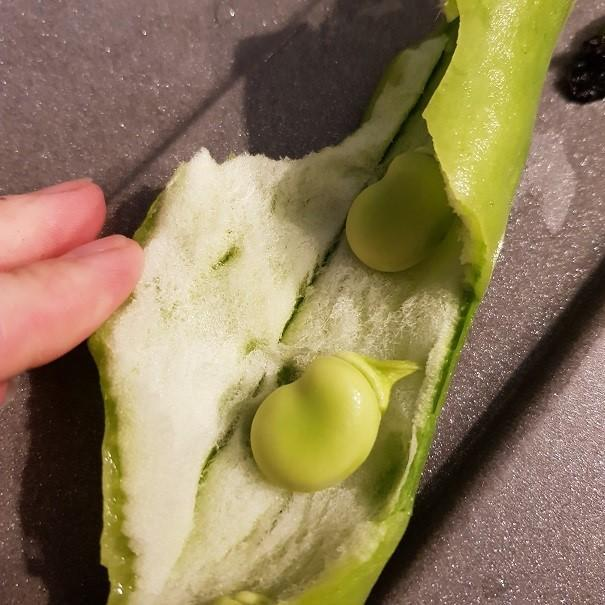 Inside one of Edward's bean pods