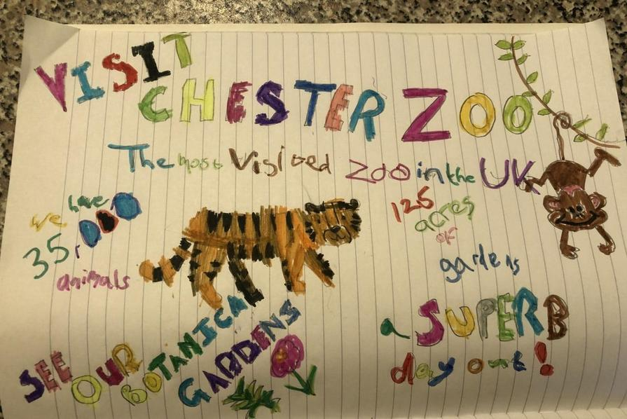 Alice's poster about Chester Zoo