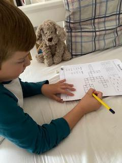 Toby completing a Spanish crossword