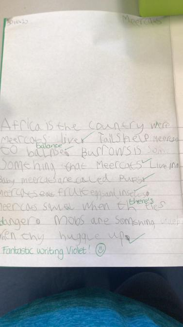 Violets super writing.