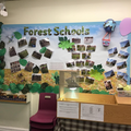 Forest schools and wider opportunities
