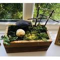 Ethan's Resurrection Garden