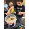 Pine Cone Feeders and Bird Cake