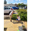 Life skills - Gardening