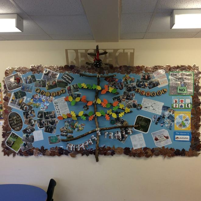 Forest School Celebration Wall