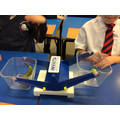 observing the balance scale
