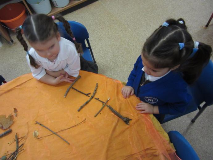 We made patterns using the twigs and leaves.