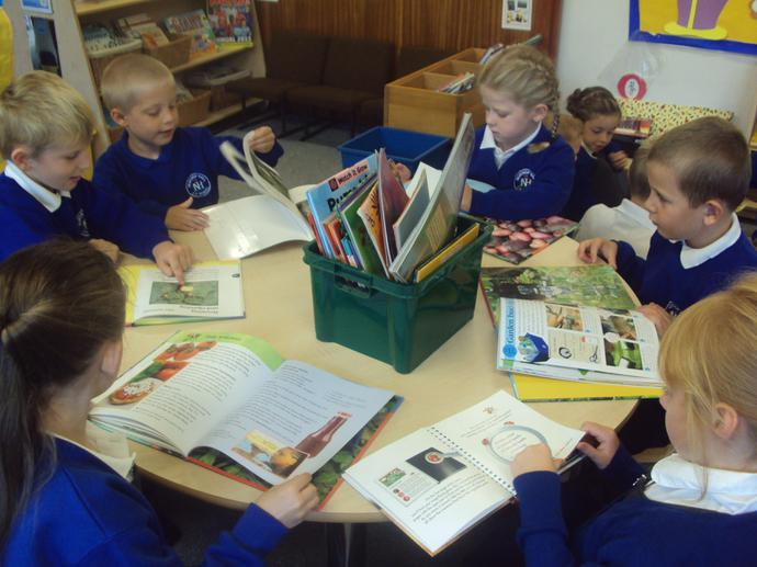Exploring non fiction books about growing food.