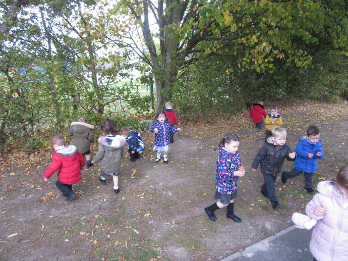 We went on an Autumn walk and collected leaves.