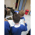 Looking at what we collected from the ponds