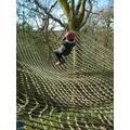 Monkey swing.