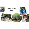 Forest School Ash