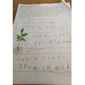 Reese's questions for his seed investigation