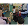 We learnt how guide dogs help people who can't see