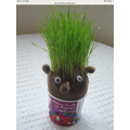 We are making grass heads!